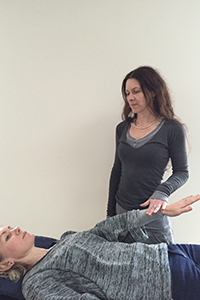 Systematic Kinesiology Workshop